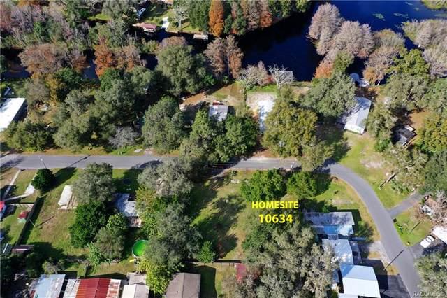 10634 E Turtle Lane, Floral City, FL 34436 (MLS #797416) :: Plantation Realty Inc.