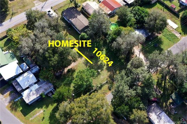 10624 E Turtle Lane, Floral City, FL 34436 (MLS #797417) :: Plantation Realty Inc.