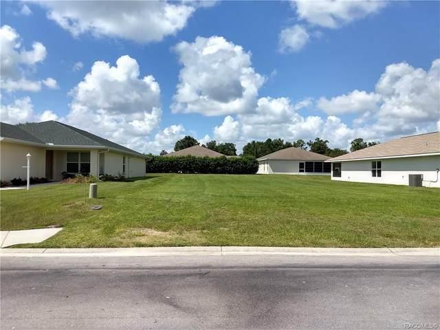 4570 N Webster Island Terrace, Hernando, FL 34442 (MLS #797432) :: Plantation Realty Inc.