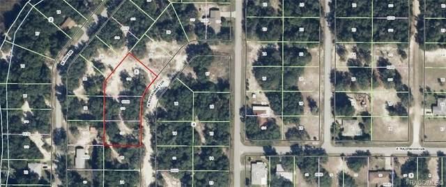 6446 N Bluebonnet Drive, Hernando, FL 34442 (MLS #797473) :: Plantation Realty Inc.