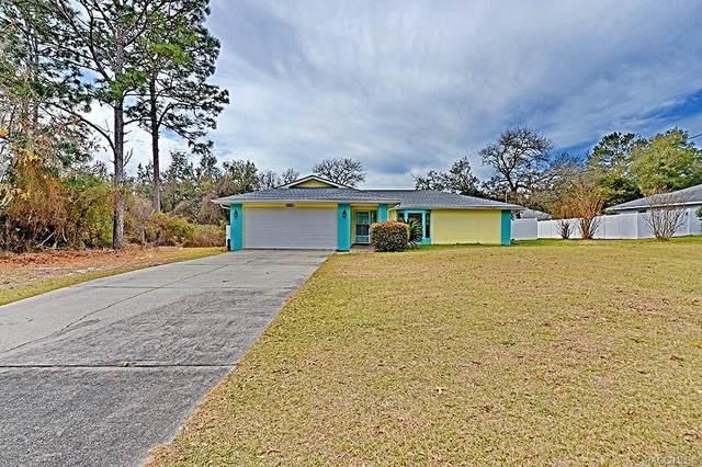 8312 N Elkcam Boulevard, Citrus Springs, FL 34433 (MLS #797566) :: Plantation Realty Inc.