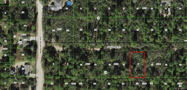 2807 Oakridge Street, Inverness, FL 34452 (MLS #797595) :: Plantation Realty Inc.