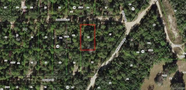 2703 Oakridge Street, Inverness, FL 34452 (MLS #797597) :: Plantation Realty Inc.