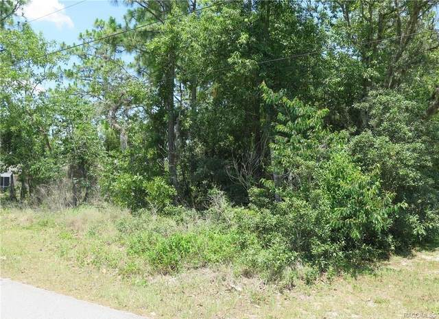 1575 E Mckinley Street, Hernando, FL 34442 (MLS #797647) :: Plantation Realty Inc.