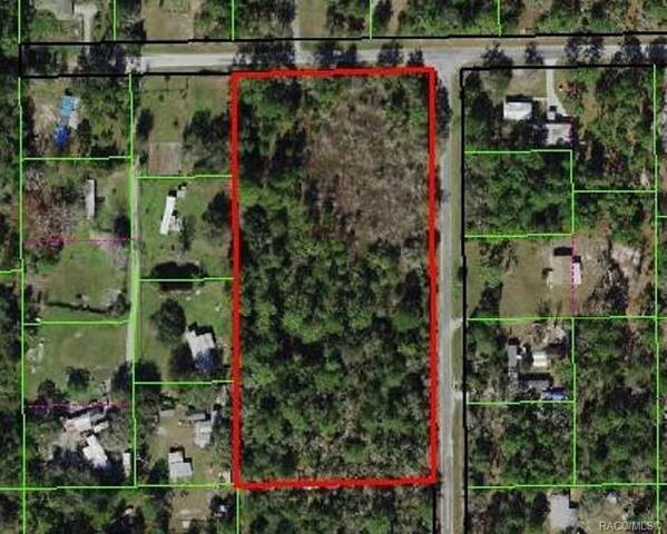 4564 N Applegate Terrace, Crystal River, FL 34428 (MLS #797714) :: Plantation Realty Inc.
