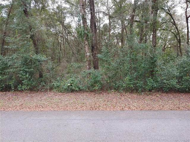6154 W Homosassa Trail, Homosassa, FL 34448 (MLS #797789) :: Plantation Realty Inc.