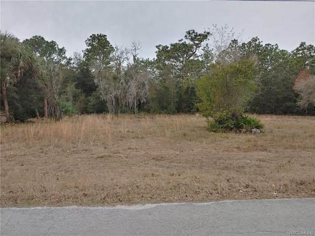 5410 S Memorial Drive, Homosassa, FL 34446 (MLS #797794) :: Plantation Realty Inc.