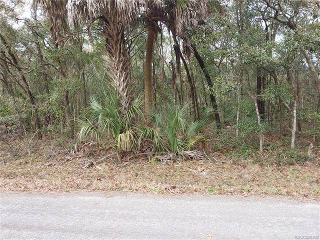 6857 W Pershing Drive, Homosassa, FL 34448 (MLS #797797) :: Plantation Realty Inc.