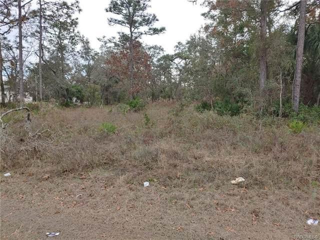 7054 W Grover Cleveland Boulevard, Homosassa, FL 34446 (MLS #797806) :: Plantation Realty Inc.