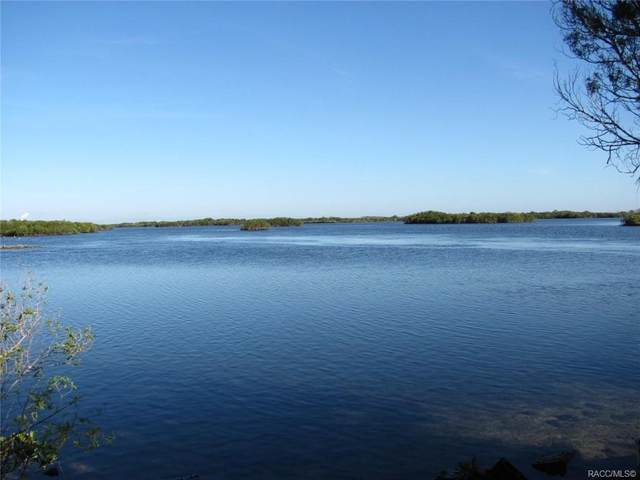 360 N Mullet Point, Crystal River, FL 34429 (MLS #797827) :: Plantation Realty Inc.