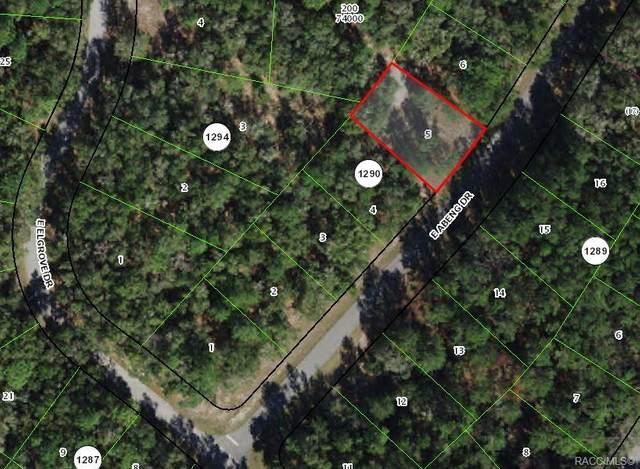 521 E Abend Drive, Citrus Springs, FL 34434 (MLS #797879) :: Plantation Realty Inc.