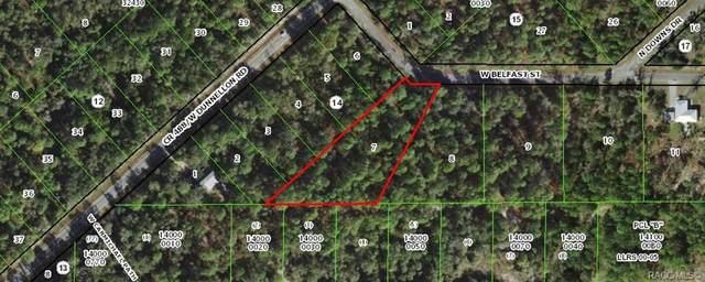 10606 W Belfast Street, Crystal River, FL 34428 (MLS #797911) :: Plantation Realty Inc.