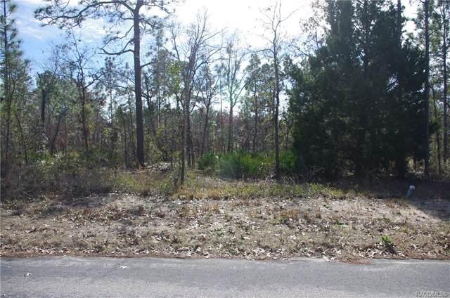 21 Grevillea Court, Homosassa, FL 34446 (MLS #797912) :: Plantation Realty Inc.
