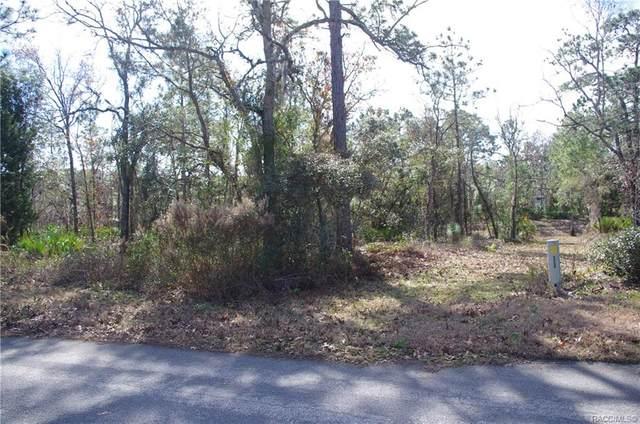 23 Grevillea Court, Homosassa, FL 34446 (MLS #797913) :: Plantation Realty Inc.