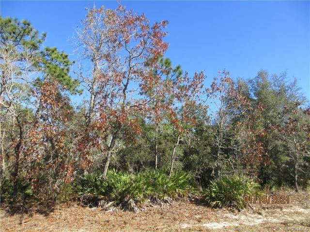 126 Linder Drive, Homosassa, FL 34446 (MLS #797929) :: Plantation Realty Inc.