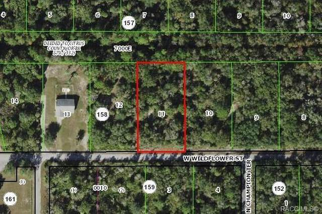 12077 W Wildflower Street, Crystal River, FL 34428 (MLS #797932) :: Plantation Realty Inc.