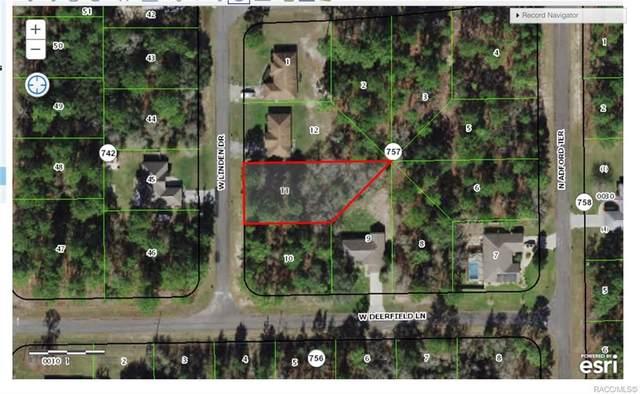 2284 W Linden Drive, Citrus Springs, FL 34434 (MLS #797956) :: Plantation Realty Inc.