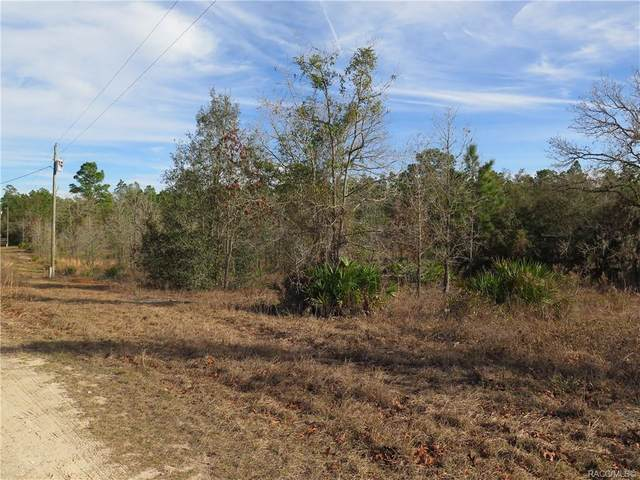 7208 W Crinoline Lane, Dunnellon, FL 34433 (MLS #797963) :: Plantation Realty Inc.