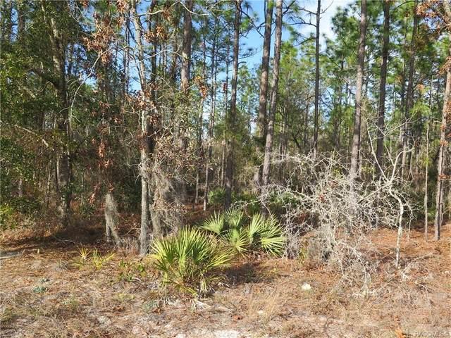 7225 W Connie Lou Court, Dunnellon, FL 34433 (MLS #797967) :: Plantation Realty Inc.