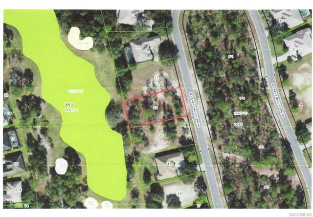 3194 N Caves Valley Path, Lecanto, FL 34461 (MLS #797980) :: Plantation Realty Inc.