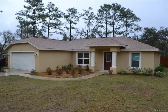 7019 N Foxdale Drive, Citrus Springs, FL 34434 (MLS #797984) :: Plantation Realty Inc.