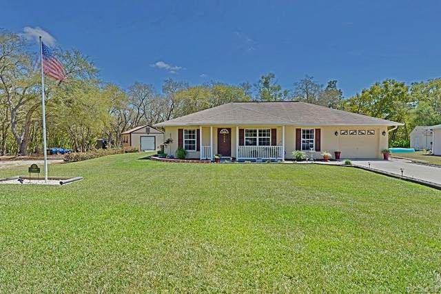 6039 N Buckland Drive, Citrus Springs, FL 34434 (MLS #798008) :: Plantation Realty Inc.