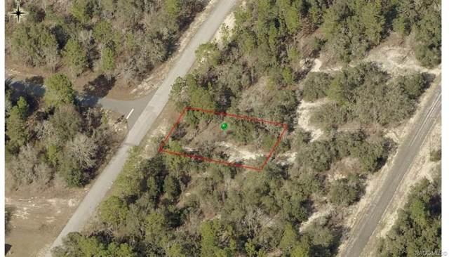 9553 N Wallace Way, Citrus Springs, FL 34433 (MLS #798014) :: Plantation Realty Inc.