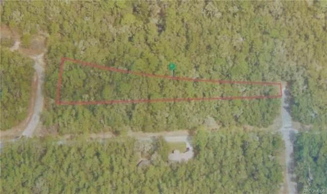 9003 N Dawn Way, Citrus Springs, FL 34434 (MLS #798041) :: Plantation Realty Inc.
