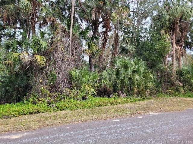 11735 W Fisherman Lane, Homosassa, FL 34448 (MLS #798042) :: Plantation Realty Inc.