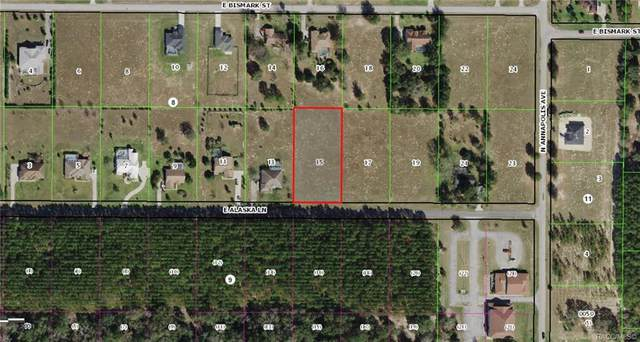 737 E Alaska Lane, Hernando, FL 34442 (MLS #798045) :: Plantation Realty Inc.