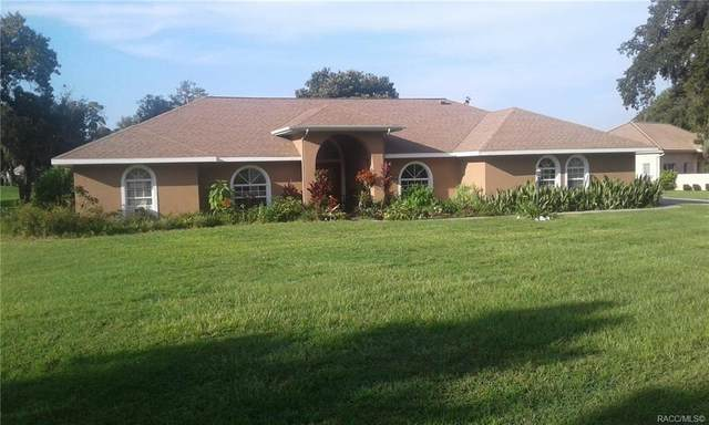 396 E Ireland Court, Hernando, FL 34442 (MLS #798054) :: Plantation Realty Inc.