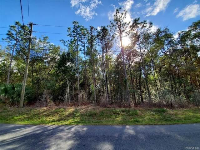 6262 E Holly Street, Inverness, FL 34452 (MLS #798071) :: Plantation Realty Inc.