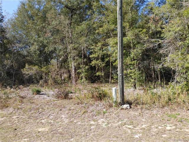 Citrus Springs, FL 34433 :: Plantation Realty Inc.