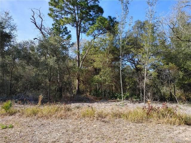 7910 N Fieldstone Drive, Citrus Springs, FL 34433 (MLS #798086) :: Plantation Realty Inc.