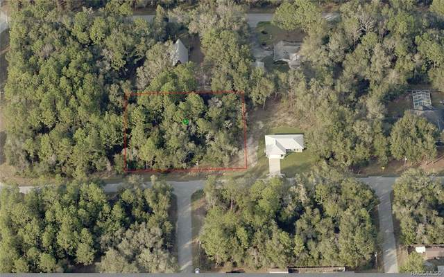2957 E Gladys Street, Inverness, FL 34453 (MLS #798095) :: Plantation Realty Inc.