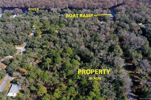 9259 E Turner Camp Road, Inverness, FL 34453 (MLS #798099) :: Plantation Realty Inc.