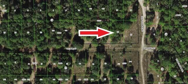 1902 Victor Street, Inverness, FL 34453 (MLS #798103) :: Plantation Realty Inc.