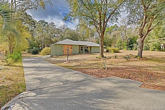9790 SW 202nd Avenue Road, Dunnellon, FL 34431 (MLS #798144) :: Plantation Realty Inc.
