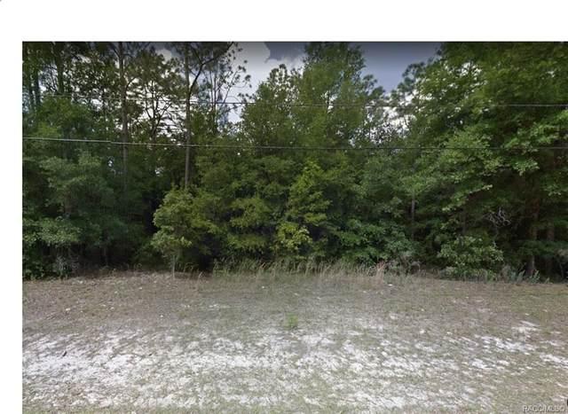 9542 N Sherman Drive, Citrus Springs, FL 34434 (MLS #798171) :: Dalton Wade Real Estate Group