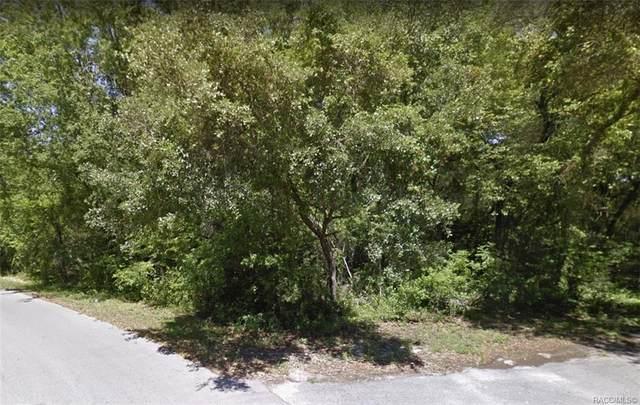 17 N Oakwood Terrace, Inverness, FL 34453 (MLS #798172) :: Plantation Realty Inc.