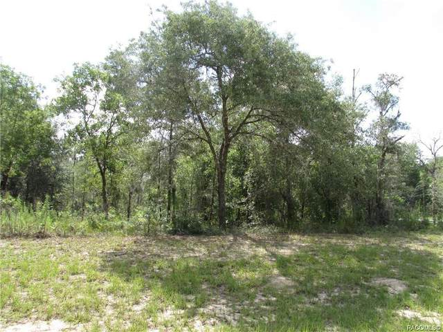 10109 N Elkcam Boulevard, Citrus Springs, FL 34433 (MLS #798177) :: Plantation Realty Inc.