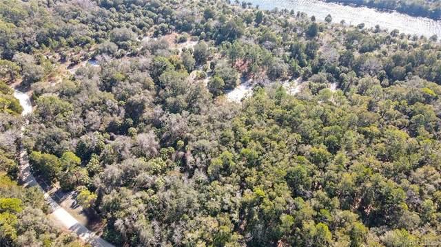 12920 W Foss Groves Path, Inglis, FL 34449 (MLS #798225) :: Plantation Realty Inc.