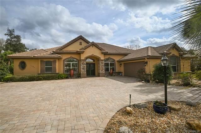 1783 N Musial Point, Hernando, FL 34442 (MLS #798241) :: Plantation Realty Inc.