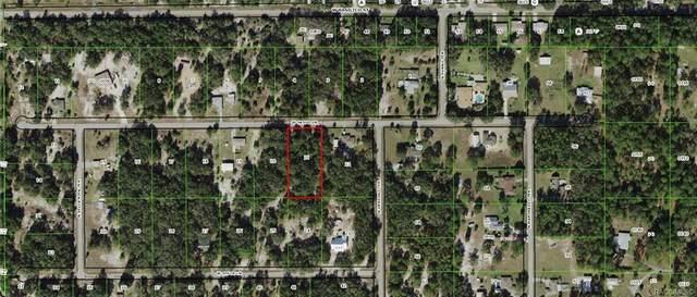 8754 W Sasso Lane, Crystal River, FL 34428 (MLS #798261) :: Plantation Realty Inc.