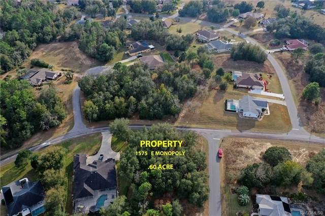 1575 E Monopoly Loop, Inverness, FL 34453 (MLS #798329) :: Plantation Realty Inc.