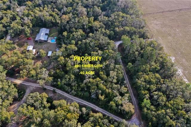 800 N Sweet Gum Way, Inverness, FL 34453 (MLS #798342) :: Plantation Realty Inc.