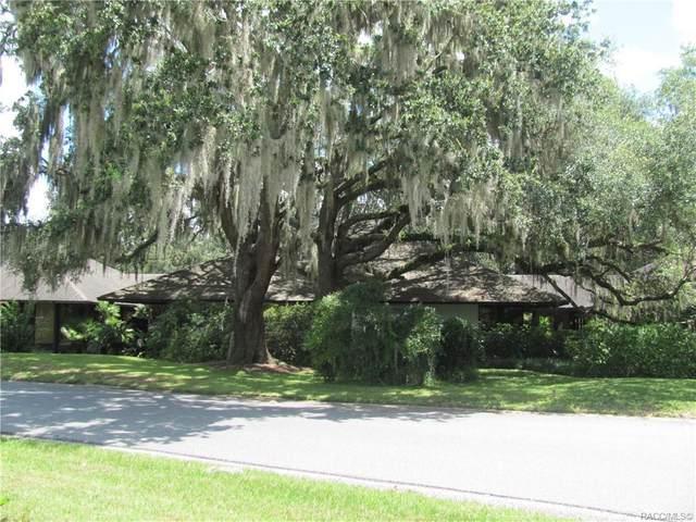 1255 N Vantage Point Drive, Crystal River, FL 34429 (MLS #798449) :: Plantation Realty Inc.