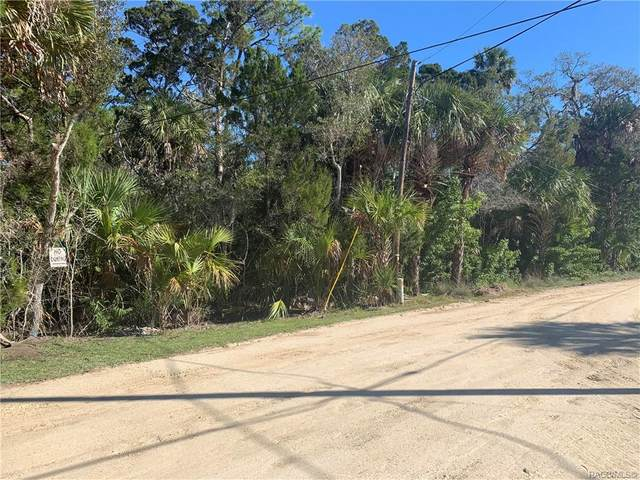 14533 & 14621 W Hide A Way Drive, Crystal River, FL 34429 (MLS #798535) :: Plantation Realty Inc.