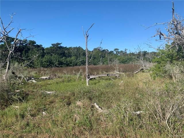 2550 S Diecidue Drive, Crystal River, FL 34429 (MLS #798539) :: Plantation Realty Inc.