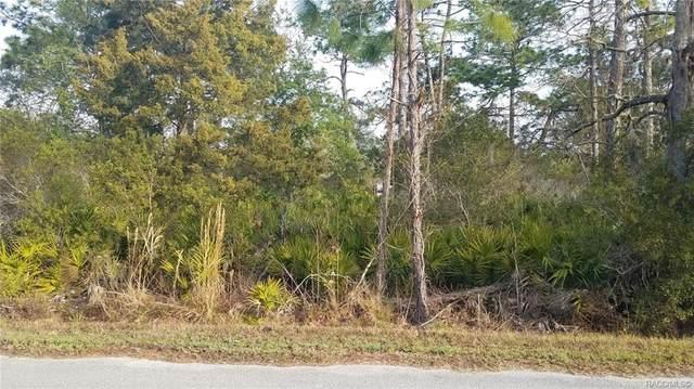 7685 Pedersen Loop W, Homosassa, FL 34447 (MLS #798664) :: Plantation Realty Inc.